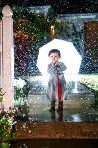 Remy in the Rain
