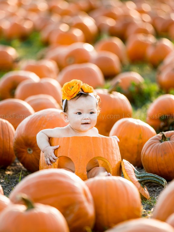 Cal Poly Pomona Pumpkin Patch Photography